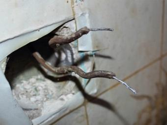 Проводка с алюминиевым сечением на розетку для стиральной машины в ванной