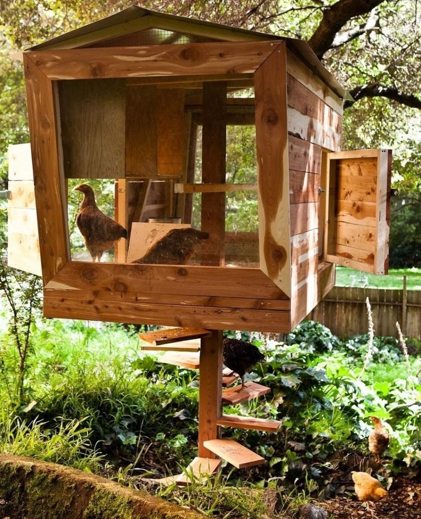 Как Построить Курятник — 10 проектов с Чертежами и Фото