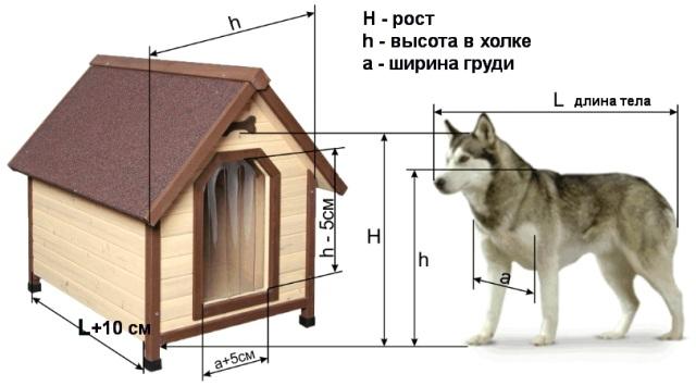 Будка для овчарки: примеры, оптимальные размеры, изготовление своими руками