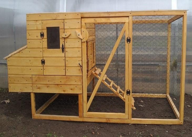 Курятник своими руками: проекты для современного фермерского хозяйства и частного дома (65 фото-идей)
