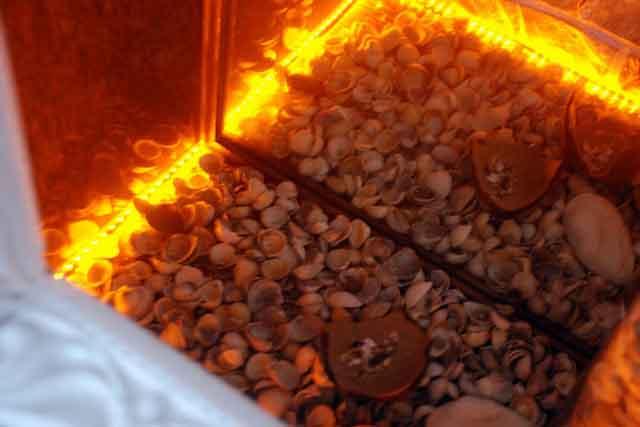 Бутафорское пламя в топке