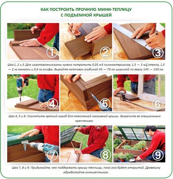 Своими руками: как сделать комнатную теплицу в домашних условиях