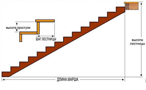 Стандартные ступени лестницы