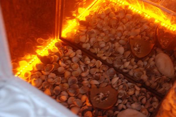 Как сделать фальш камин: искусственный камин своими руками