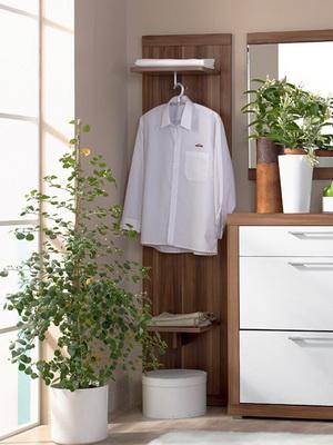 Подбор комнатных цветов для интерьера комнаты и квартиры