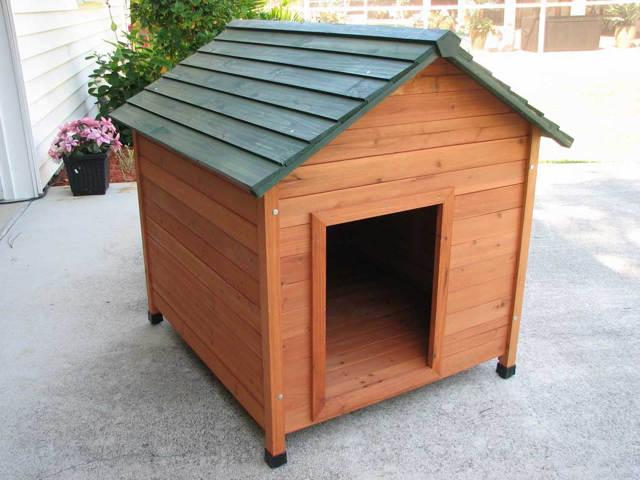 собачья-будка-с-двухскатной-крышей