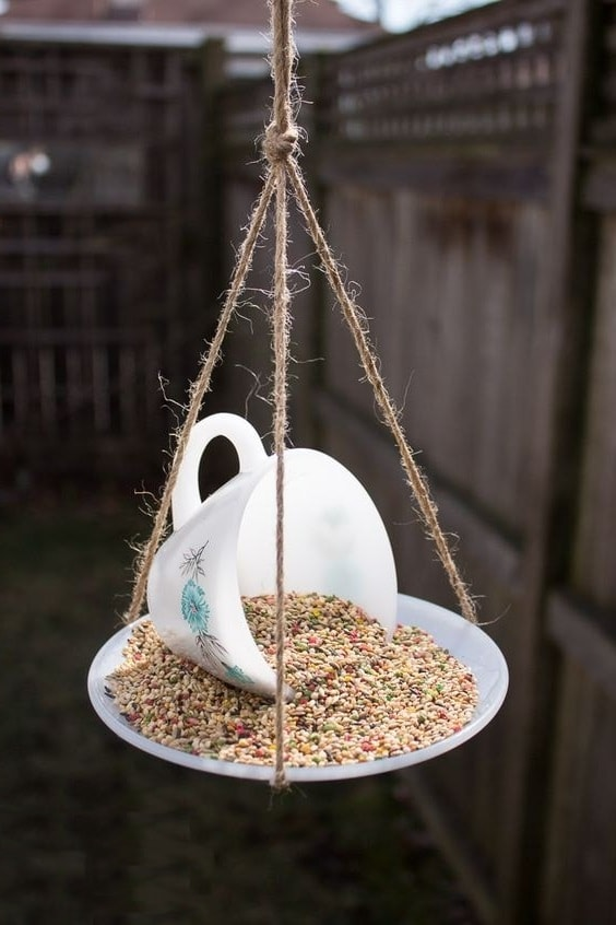 Необычная кормушка для птиц из чайного блюдца