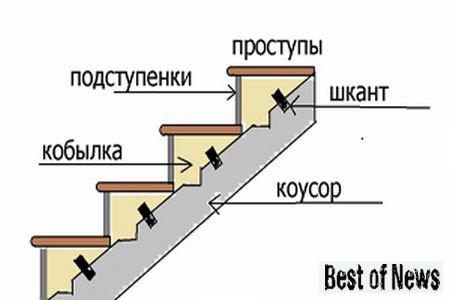 na-dannom-risunke-naglyadno-pokazano-kak-montiruyutsya-kobylki-na-lestnichnoj-konstruktsii