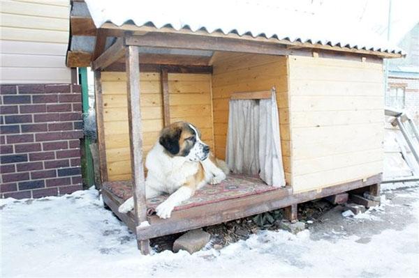 будка для собаки на зиму