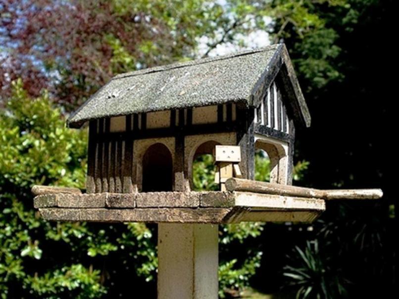 Столовая для птичек