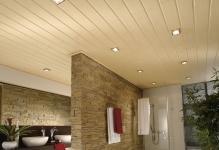Потолок из МДФ-панелей (фото)